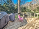 1041 North Carter Road Deck 1