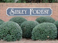 Sibley Forest in East Cobb