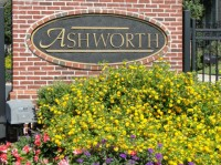 Ashworth in Dunwoody