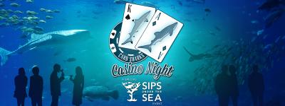suts_casinonight