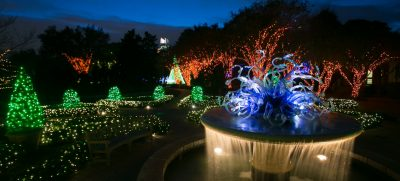 Superieur 111214_garden_lights_0125