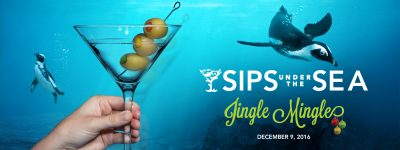 suts_jingle-mingle-1400x525