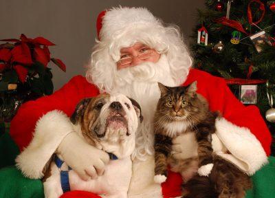 santa-paws